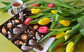 Picture tea, candy, tulips