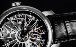 Picture mechanism, clock, engineering