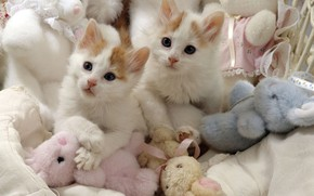 Picture toys, pair, kittens, white