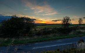Picture road, the sky, landscape, the evening