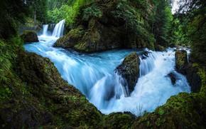 Wallpaper forest, summer, water, rocks, vegetation, waterfall, stream