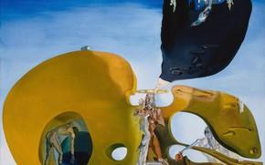 Picture surrealism, picture, Salvador Dali, Salvador Dali, The Birth Of Fluid Desires