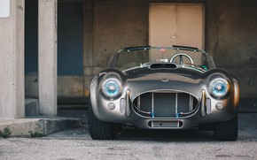 Picture Shelby, the front, Cobra