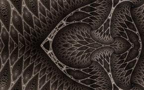 Picture Pattern, Grey, Veins