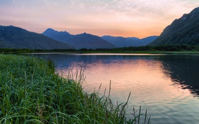 Picture forest, trees, sunset, mountains, river, the reeds, the evening, Russia, Kamchatka