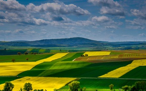 Wallpaper field, Rhineland-Palatinate, Germany, hills