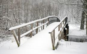 Picture trees, bridge, Park, winter, snow, winter landscape