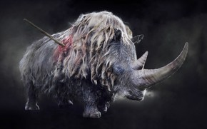 Picture wool, Rhino, horn, ancient, prehistoric, wounded