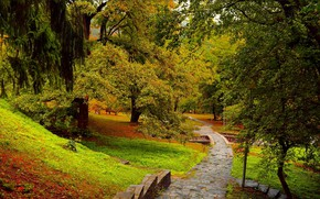 Picture Autumn, Trees, Park, Fall, Park, Autumn, Trees
