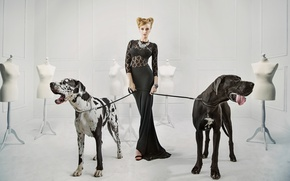 Wallpaper dogs, girl, decoration, pose, necklace, makeup, figure, dress, hairstyle, blonde, grace, beauty, in black, mannequins, ...