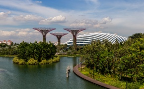 Picture greens, trees, landscape, design, pond, Park, palm trees, Singapore, structure, gardens, Gardens by the Bay