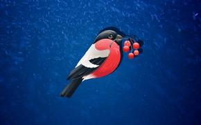 Picture Winter, Minimalism, Bird, Snow, Sprig, Background, Bullfinch, Rowan