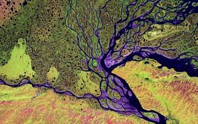 Picture river, Delta, Lena, Siberia
