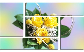 Picture Graphics, Flowers, Rozciecia