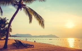 Picture sand, sea, wave, beach, summer, the sky, sunrise, palm trees, shore, summer, beach, sea, seascape, …