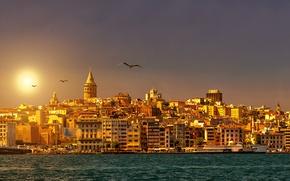 Picture the sky, the sun, Strait, dawn, coast, ship, seagulls, home, Istanbul, Turkey