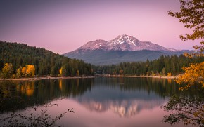 Picture autumn, forest, mountains, branches, lake, reflection, CA, California, Lake Siskiyou, The cascade mountains, Mount Shasta, …