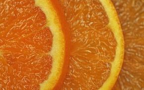 Picture background, color, orange, slices