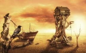 Picture house, fantasy, digital, crow, art, Desert