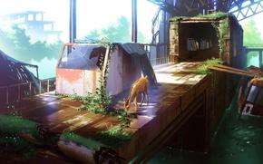 Picture glass, water, landscape, deer, the tunnel, Board, ruins, platform, anime, art, technoheart