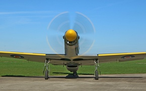 Picture Mustang, propeller, the airfield, Titan, T-51B