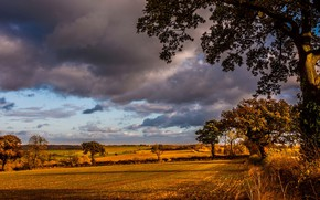 Wallpaper autumn, light, field, morning