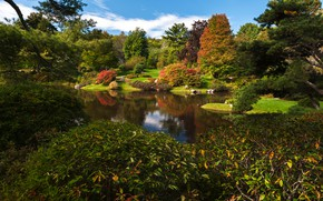 Picture greens, the sky, grass, the sun, clouds, trees, pond, Park, stones, USA, the bushes, Asticou …