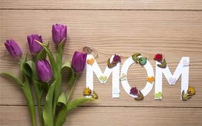 Picture flowers, flowers, spring, bouquet, gift, purple, tulips, romantic, tulips, love, fresh, with love, mother's Day