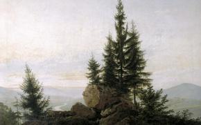 Picture trees, landscape, stones, picture, Caspar David Friedrich, View of the Elbe Valley