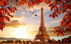Wallpaper river, France, Paris, France, leaves, cityscape, autumn, Paris, Eiffel Tower, autumn