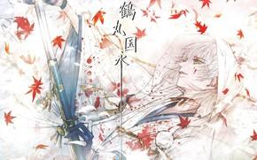 Picture blood, katana, samurai, characters, gloves, guy, white hair, Japanese clothing, maple leaves, yellow eyes, sheath, …