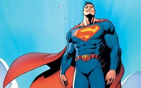 Picture Birds, Costume, Belt, Hero, Superman, Comic, Cloak, Sky, Superhero, Hero, Birds, Neo, Brunette, Symbol, Superman, …