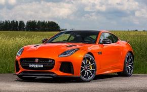 Picture road, field, Jaguar, Jaguar, car, F-Type, SVR