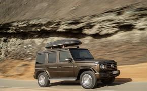 Picture rock, Mercedes-Benz, the trunk, trip, 2018, G-Class