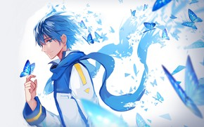 Picture butterfly, guy, Vocaloid, Vocaloid, Kaito
