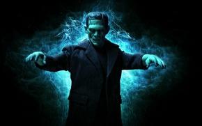 Picture toy, figurine, Frankenstein