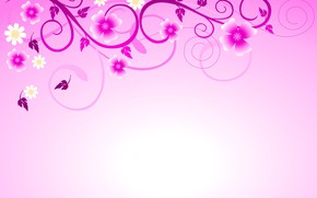 Picture background, patterns, flowers