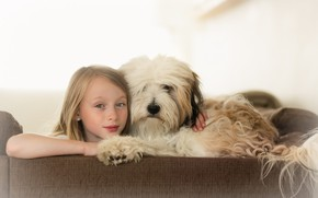 Picture background, dog, girl