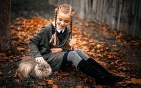 Picture autumn, cat, girl, the beauty, Sergey Piltnik