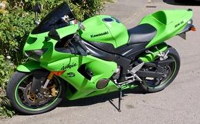Picture green, Asphalt, motorcycle, bike, the bushes, motorcycle, superbike, sportbike, Kawasaki Ninja ZX-6R, background street