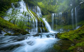Picture forest, nature, river, stones, moss, waterfalls, Panther Creek Falls