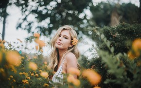 Picture girl, flowers, blonde