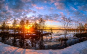 Picture nature, snow, cold, forest, sunset