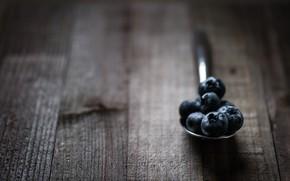 Picture macro, blueberries, spoon