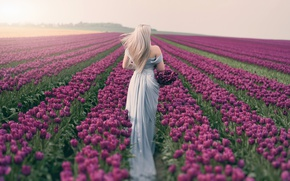 Picture field, girl, spring, tulips