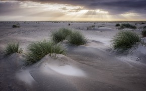 Picture the sky, grass, dunes