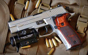 Picture gun, weapons, gun, pistol, weapon, Sig Sauer, P226, Sig P226, П226, SIG Sauer