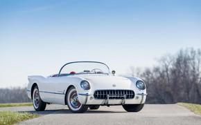 Wallpaper Classic, 1954, White, Polo, Chevrolt Corvette