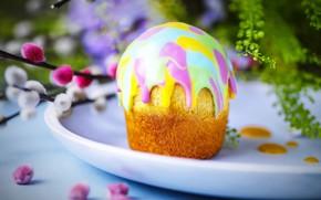 Picture Easter, cake, Verba, glaze
