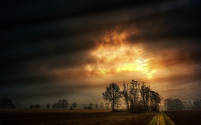 Picture road, clouds, trees, landscape, glow